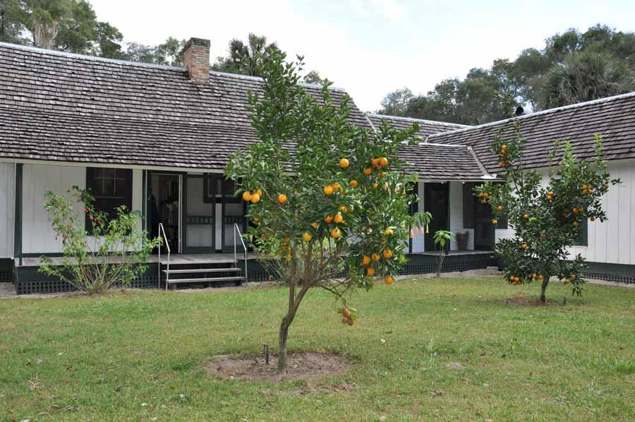 RawlingsBackyard-Oranges_Best