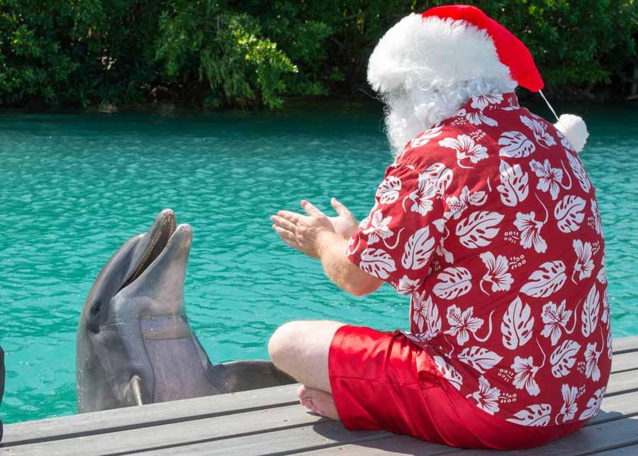 Family-Friendly Holiday Retreats