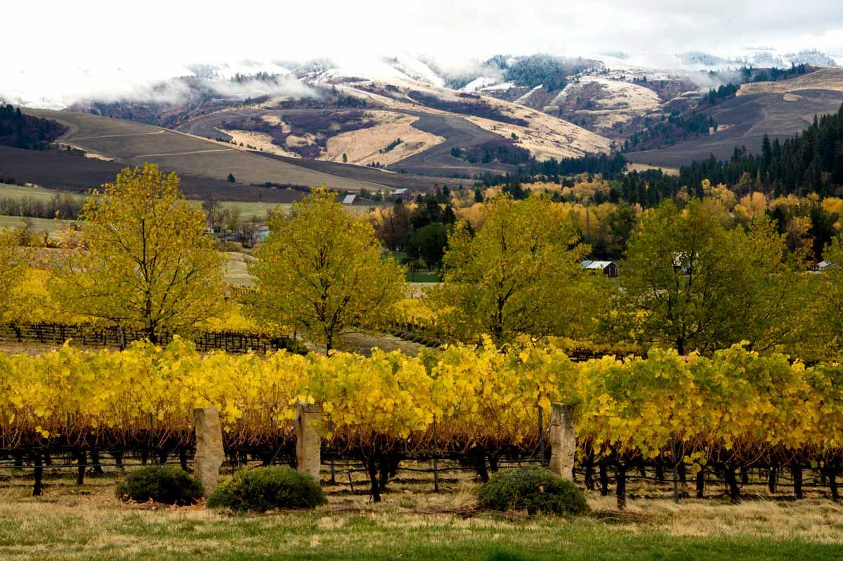 Photos: Courtesy Of Washington State Wine Commission